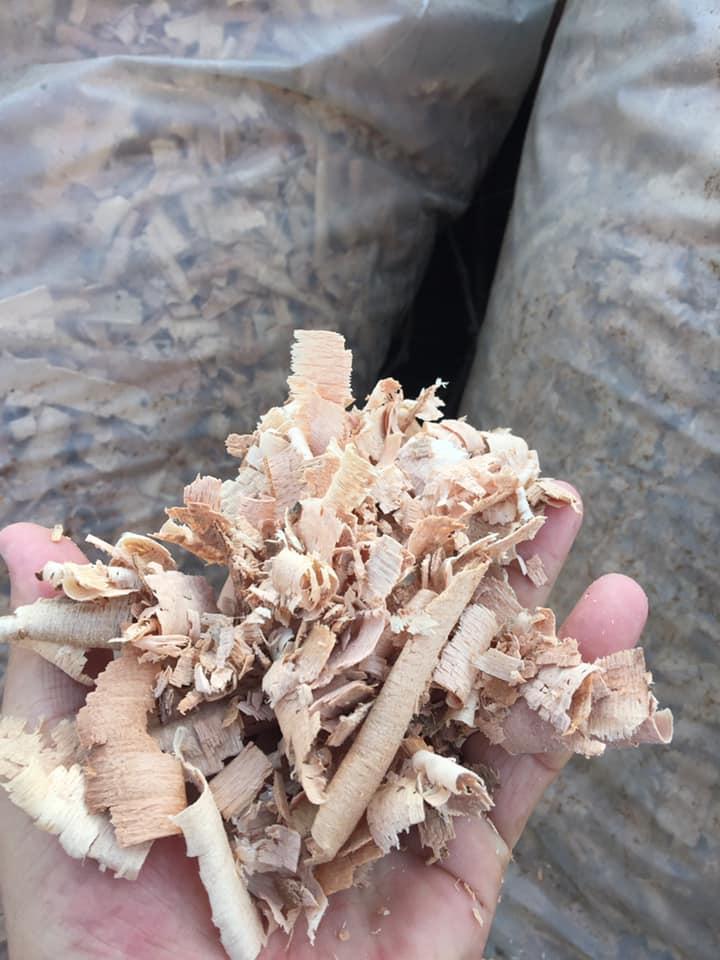 altlık kaba kayın talaşı